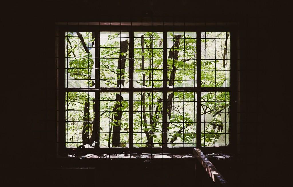 green-window